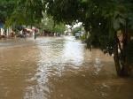 Flooding (21)